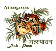 Matsayasana ~ Yoga Fish Pose by BSherdahl