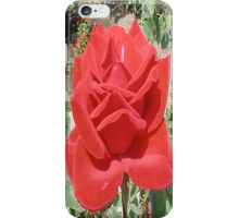 RedRose2... iPhone Case/Skin