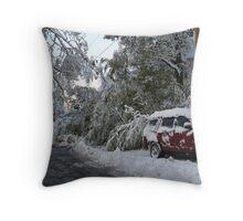 Blizzard!  2011! Throw Pillow