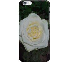 White Rose 2... iPhone Case/Skin