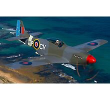 Mustang Fighter Photographic Print