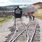 Cumbres-Toltec Narrow-Gauge Railroad,Colorado by lenspiro