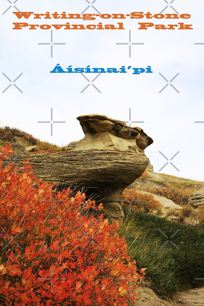 Writing on Stone Calendar by Alyce Taylor