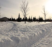 Canadian Winter by kristijacobsen