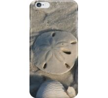 Sand Dollar I-Phone Cover iPhone Case/Skin