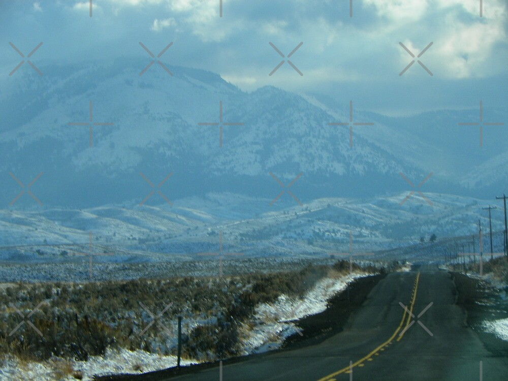 Oregon Highway 245 by Betty  Town Duncan