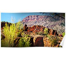 Salt River Canyon Poster