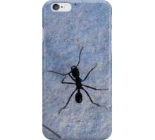 Ant in wilderness iPhone Case/Skin