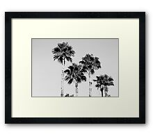 sky high palms Framed Print