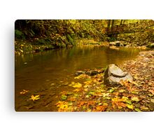 McDowell Creek Landscape Canvas Print