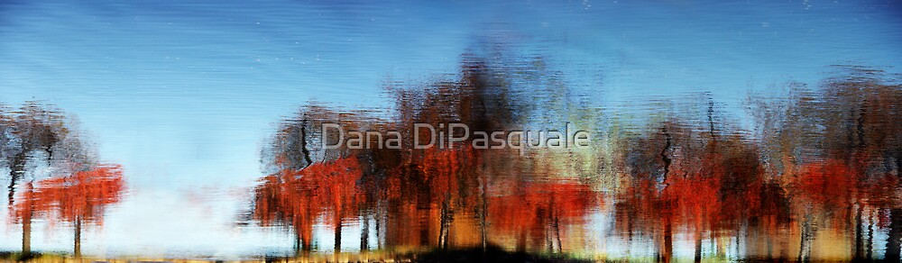 A Walk on the Esplanade by Dana DiPasquale