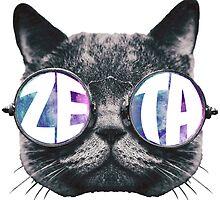 Zeta Cat Galaxy by trendysticks