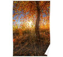 Glowingly Autumn Poster