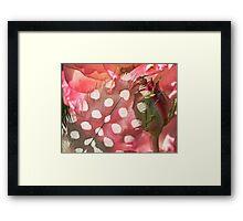 Hidden Pink Framed Print