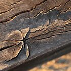 Aged wooden beam by Ian Jones