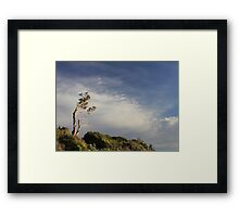 ~Salute the Sun~  Point Lonsdale, Victoria Framed Print
