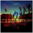 Sugarcane Sunset by MobiTog