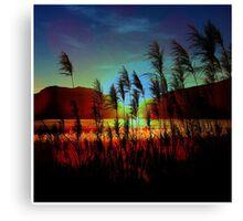 Sugarcane Sunset Canvas Print