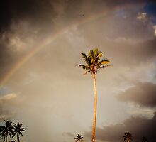 Rainbow in the Evening by Jan  Stroup ~ Photojournalist