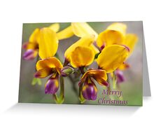 card - pansy orchid 2 Greeting Card