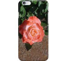 Another Orange Rose... iPhone Case/Skin