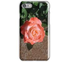 Another Orange Rose... iPhone Case/Skin