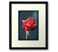 a softer touch Framed Print
