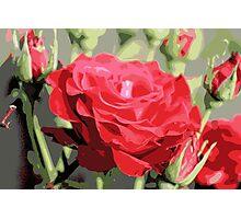 rose kisses Photographic Print