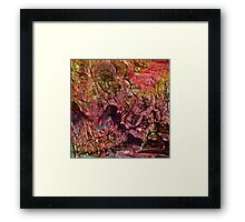 Alchemical Fire - Salamander Framed Print