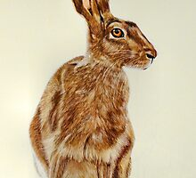 Brown Hare by Carol Jermy