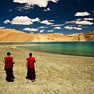 What a wonderful world by Vikram Franklin