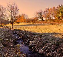 Fall Morning  by John  Kapusta