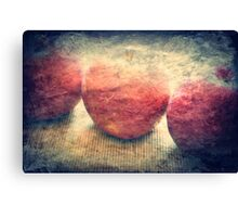 red and ready Canvas Print