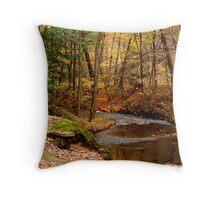 Autumn Waterscape  Throw Pillow