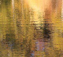 Golden Pond by Lynn Wiles