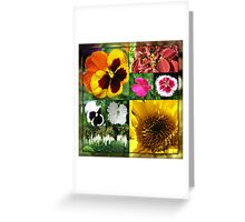 Late Summer Flowers Collage Greeting Card
