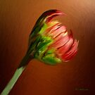 This Broken Blossom by RC deWinter
