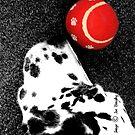 Red Ball by © Joe  Beasley IPA