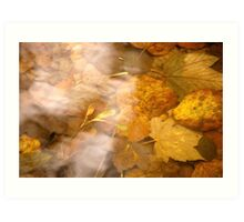 Shallow Autumn Waters .. Art Print
