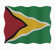 Guyana flag by stuwdamdorp