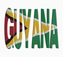 Guyana flag by stuwdamdorp