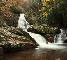 spruce flats falls  by kathy s gillentine