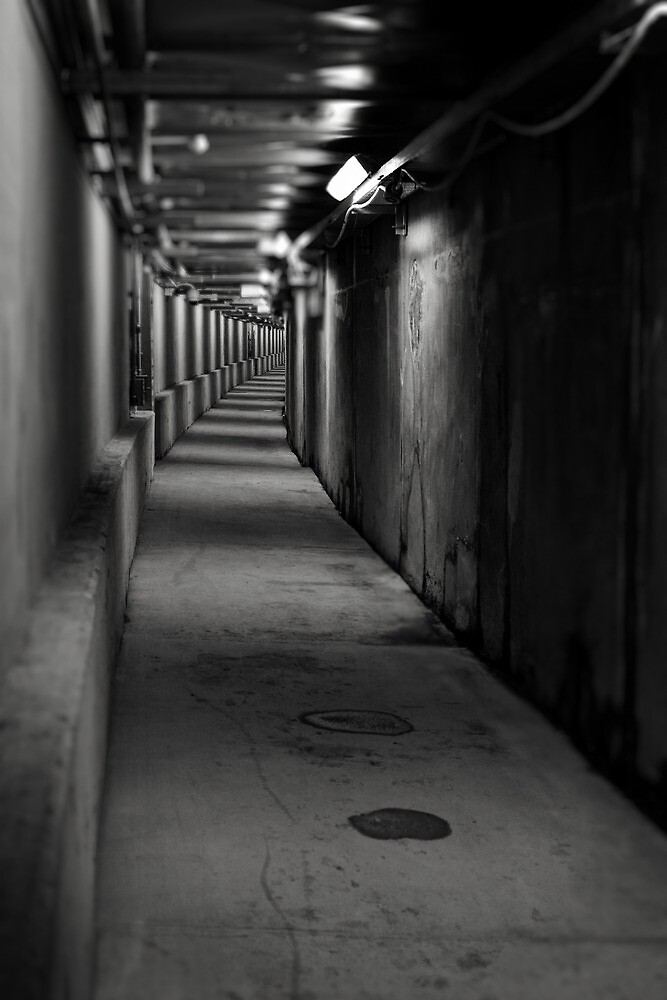 Subterranean Penetration by Peter Denniston