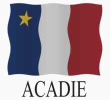 Acadian flag by stuwdamdorp