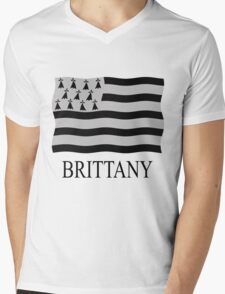 Brittany flag Mens V-Neck T-Shirt