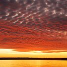 Sunset over the Sound by Amy Hale