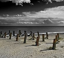 The Remains of the Pier by Catherine Hamilton-Veal  ©