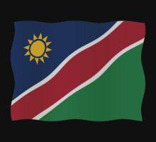 Namibian flag by stuwdamdorp