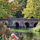 Bridge over the Avon by Clive