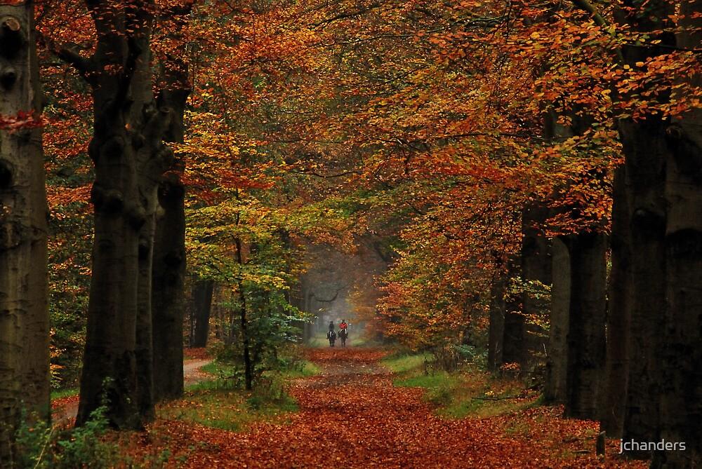Riding in autumnal splendour by jchanders